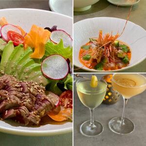 Cocktails, Seared Ahi Salad, and Shrimp Ceviche
