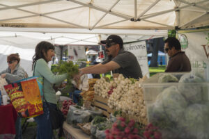 Farmers Market by Dirt Road Travels