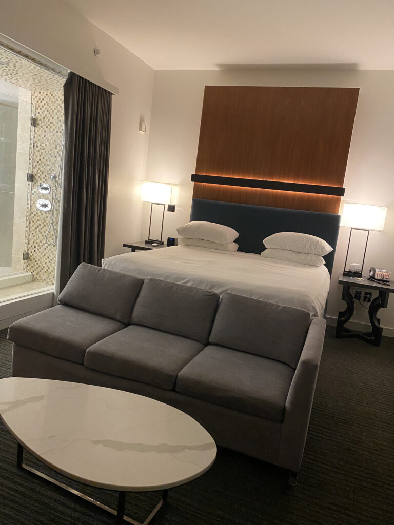 Andaz minimalist bedroom open to sitting area and glassed shower